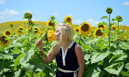 Aromachologie : les parfums pour améliorer votre bien-être