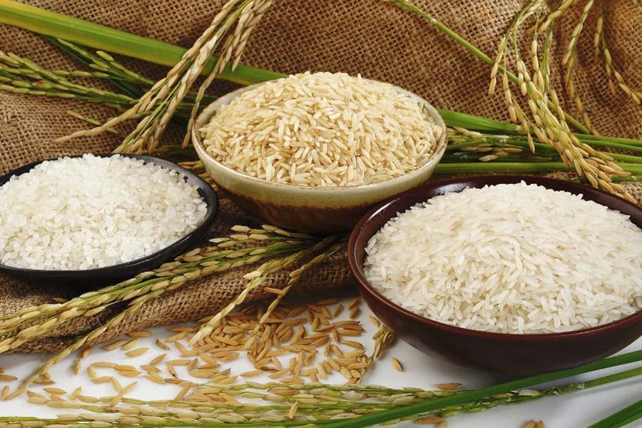quel-riz-pour-perdre-du-poids-basmati-complet-blanc