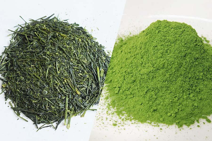 difference-entre-the-vert-sencha-et-the-vert-matcha