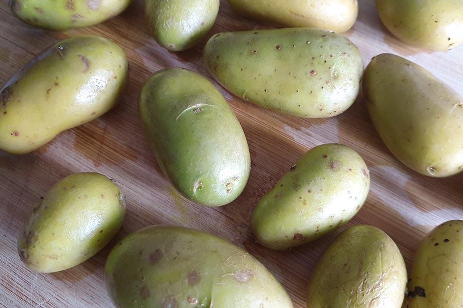 pommes-de-terre-vertes-peut-on-les-manger