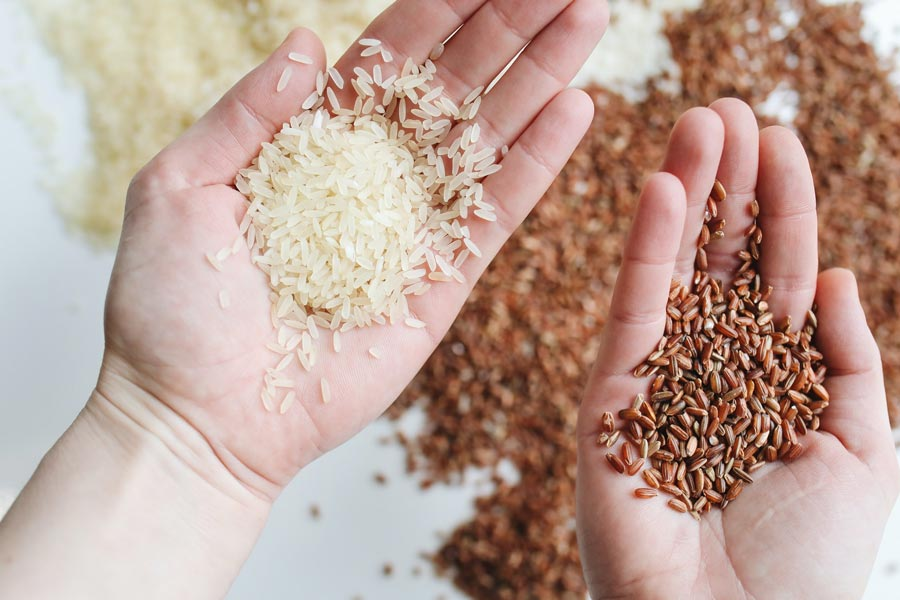 faut-il-faire-tremper-le-riz